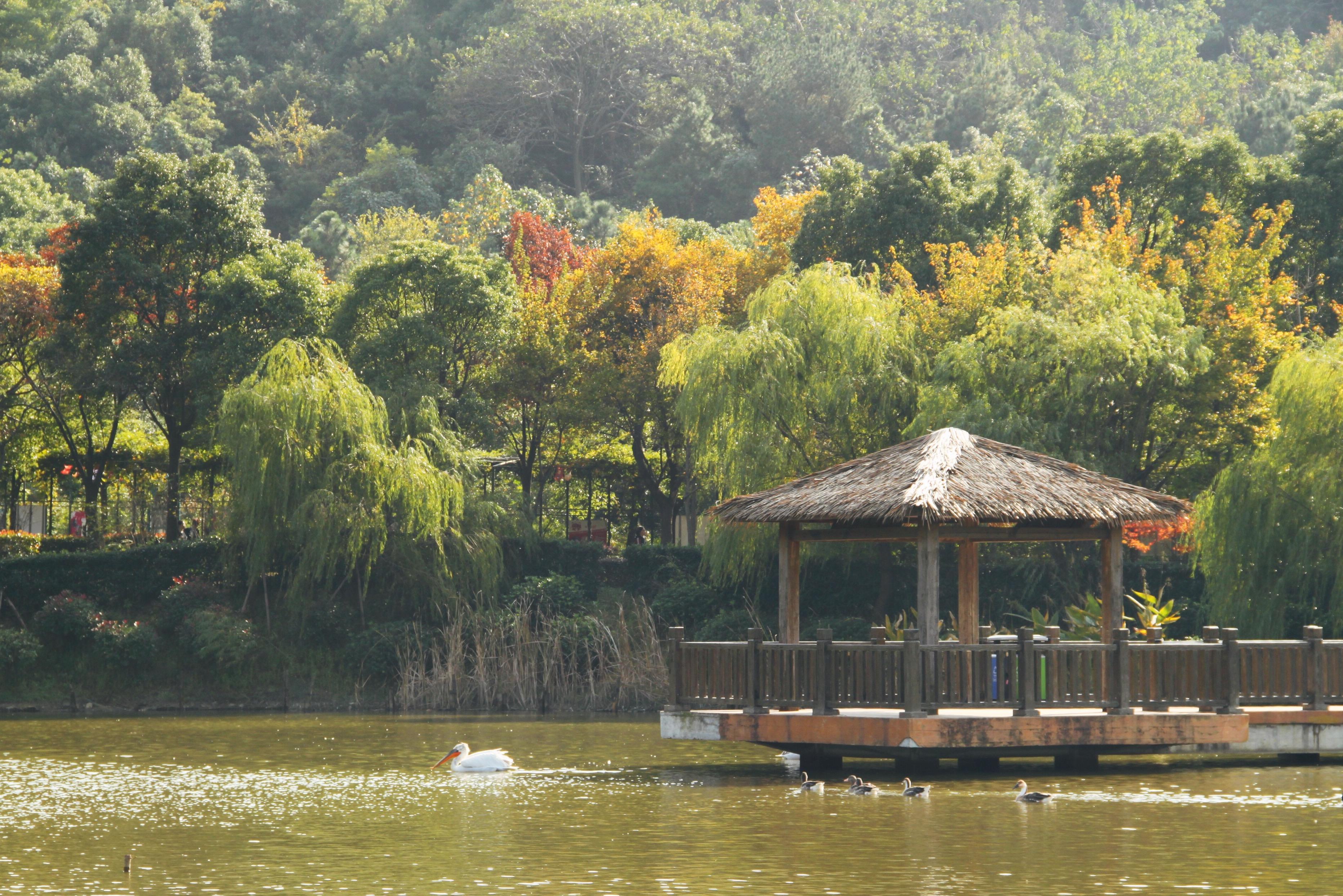 无锡动物园 太湖欢乐园
